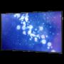 75″ Touchscreen monitor rentals – Samsung DM75E 75 inch